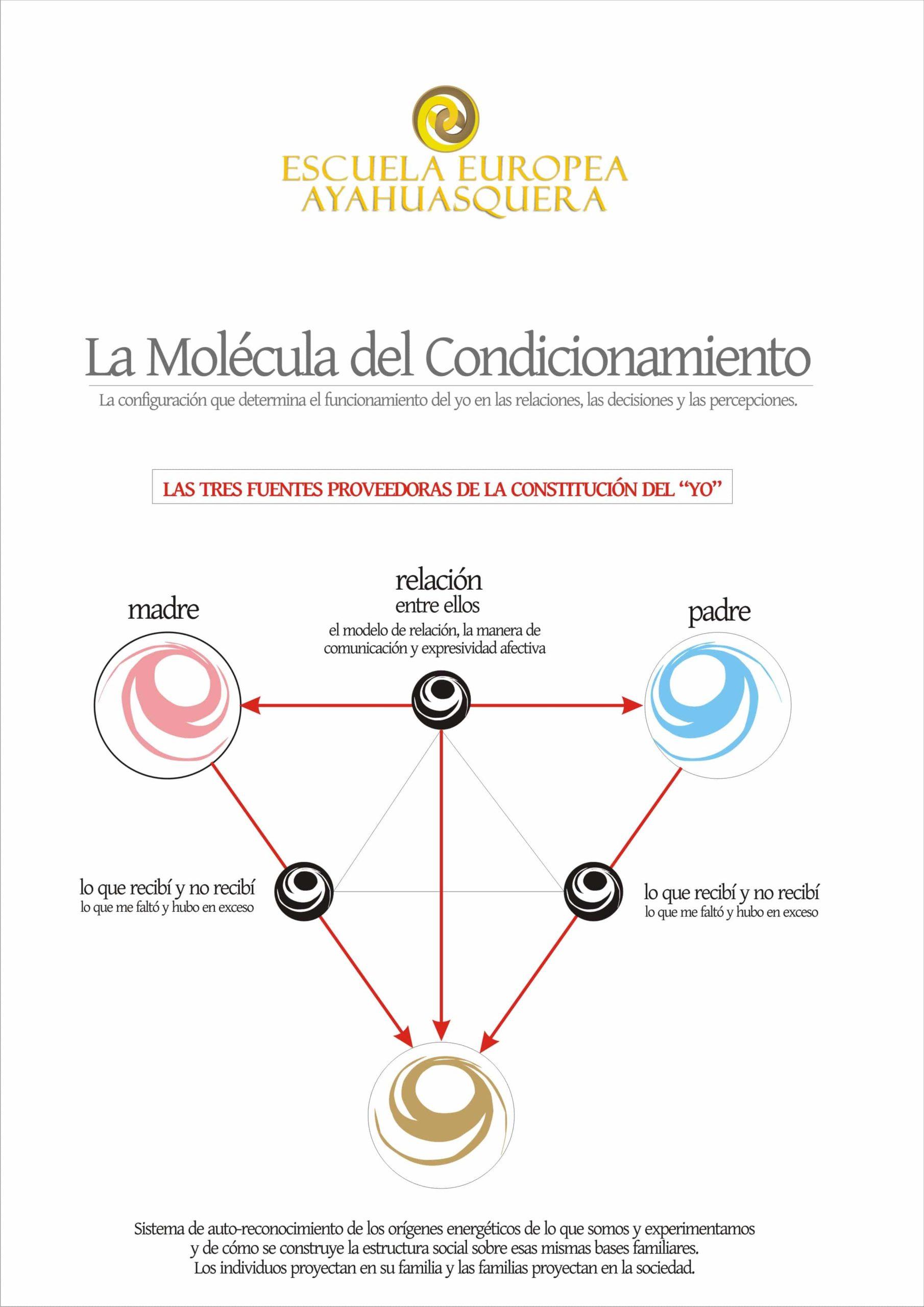molecula-de-condicionamiento-1-ok