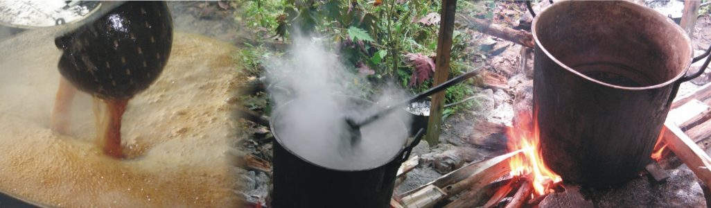 cocinada de medicina chamanica